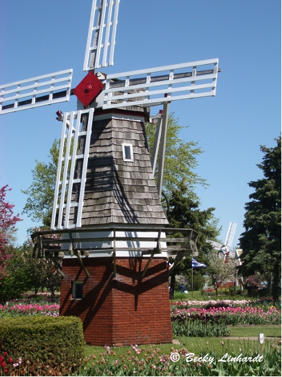 Dutch Culture lives in Holland